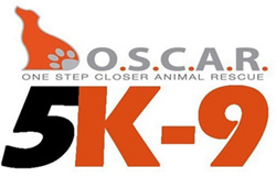 Shelter Campaign - OSCAR Animal Rescue in Sparta, NJ